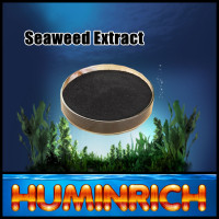Huminrich Shenyang 3-5-17 Npk Seaweed Extract Drip Irrigation Foliar Fertilizer