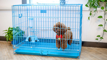 China wholesale metal iron wire dog kennel / welded wire mesh dog crate / indoor folding dog cage