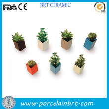Custom design square mini ceramic flower pots for indoor decoration