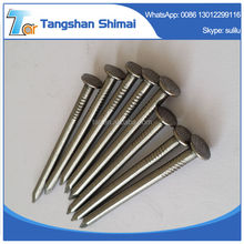 iron nails manufacture made in china factory price polished common wire nails