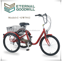 "NY-GW7012-6SPX24"" tricycle from China for bike geeks and users"