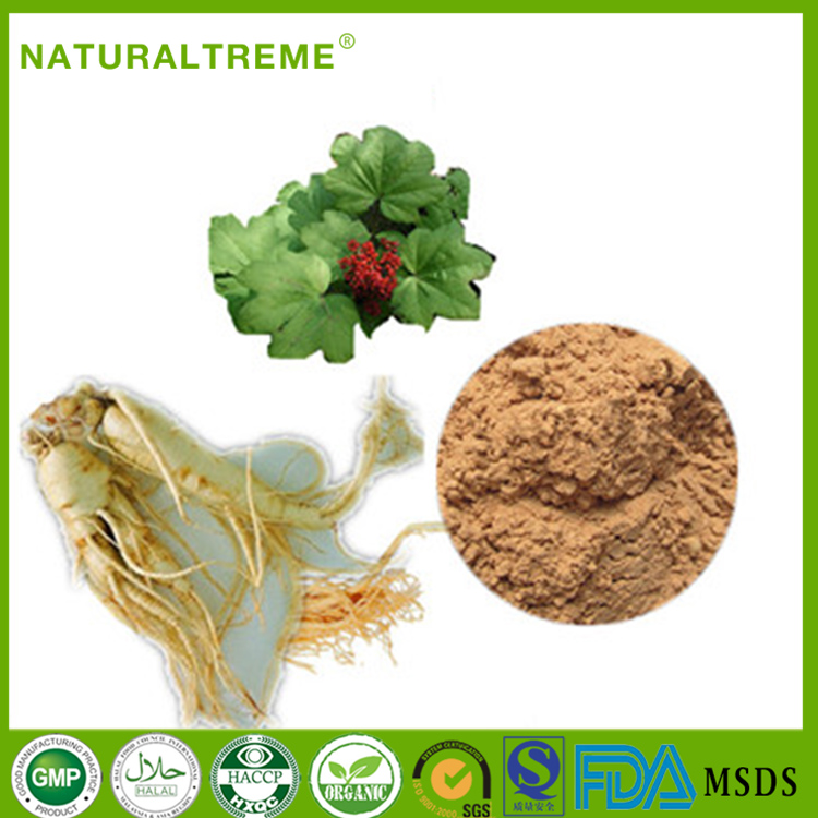 Enhance Immunity Panax Ginseng P.E. Gen-sen Extract Powder