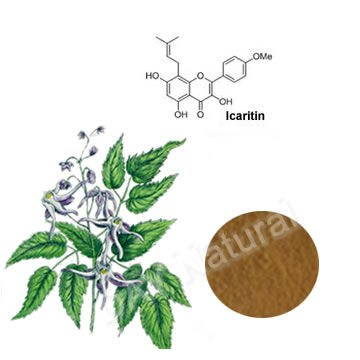 Iso Epimedium Extract Icariin 98% HPLC to cure ED ( erectile dysfunction )