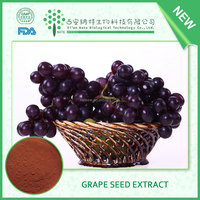 High quality Grape Seed Extract OPC 95%, ORAC>16000 and Vitis vinifera extract