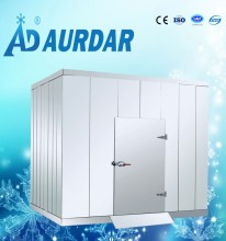 Fish mini freezer room, refrigeration unit cold storage