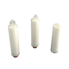 Micron Replacement PES Pleated Filter Cartridge