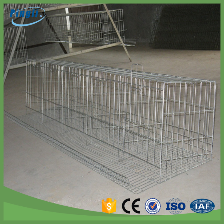 Different sizes 4 tier hot dipped galvanized H-Frame battery chicken cage