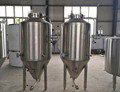 200L common beer brewery equipment, beer fermenter for beer brewing