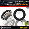 "Made In China 15"" High-efficiency Car Audio Subwoofer SPL"