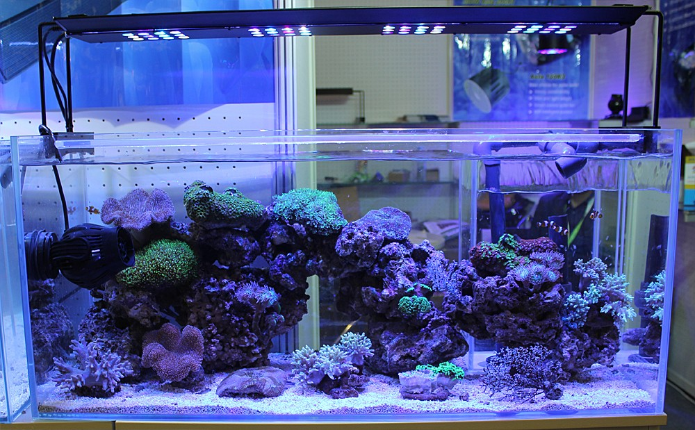 Long lifespan aquarium led light for coral reef used marine lighting