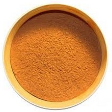 Cat's Claw Extract Powder Cat's Claw Dry Extract Nature Shredded Cat's Claw