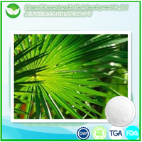 100% natural best price Saw Palmetto Extract