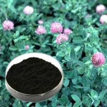 top quality red clover extract (trifolium pratense l. extract)