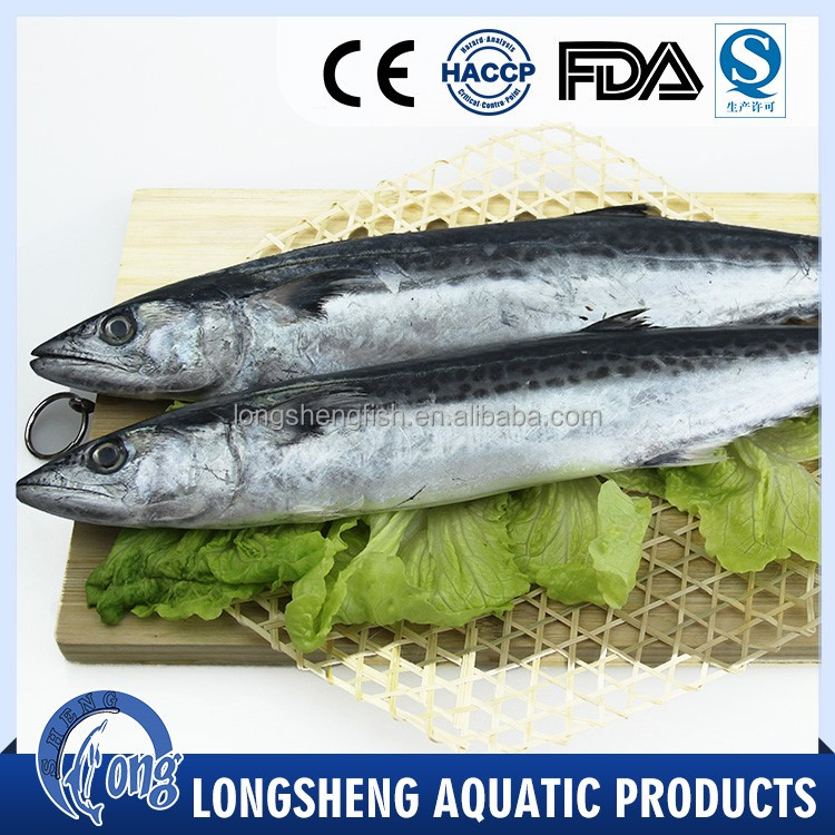 High Quality Seafood frozen spanish mackerel