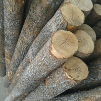 Alder Red Birch Logs