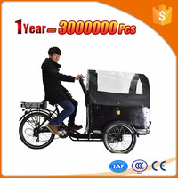 reasonable price new cargo trike for sale for transporting