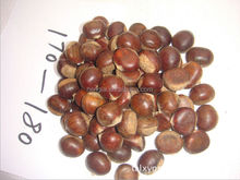 price chestnuts for sale buy chestnuts vietnam snack foods
