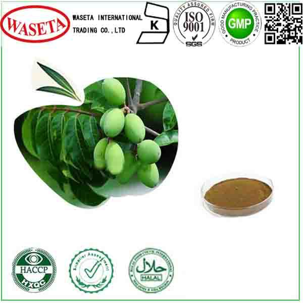 Olive Leaf Extract 10%,20%,40%,60%,HPLC high quality
