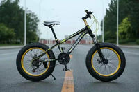 New product 20 inch fat bike snow bike for sale
