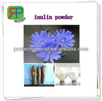 PROTECHEM supply bulk organic inulin powder extracted from chicory root