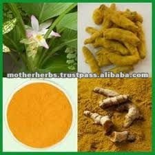 Pure Graded Turmeric Extract / Curcumin Extract