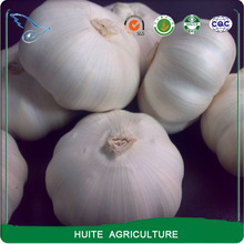 Good farmer fresh garlic for planter sale/peeled garlic