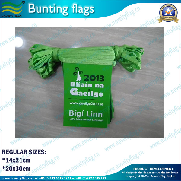 Hanging Decorative Plastic/PVC/PE/Polyester bunting flags