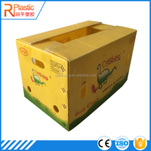 Factory price portable corflute pp asparagus packing box