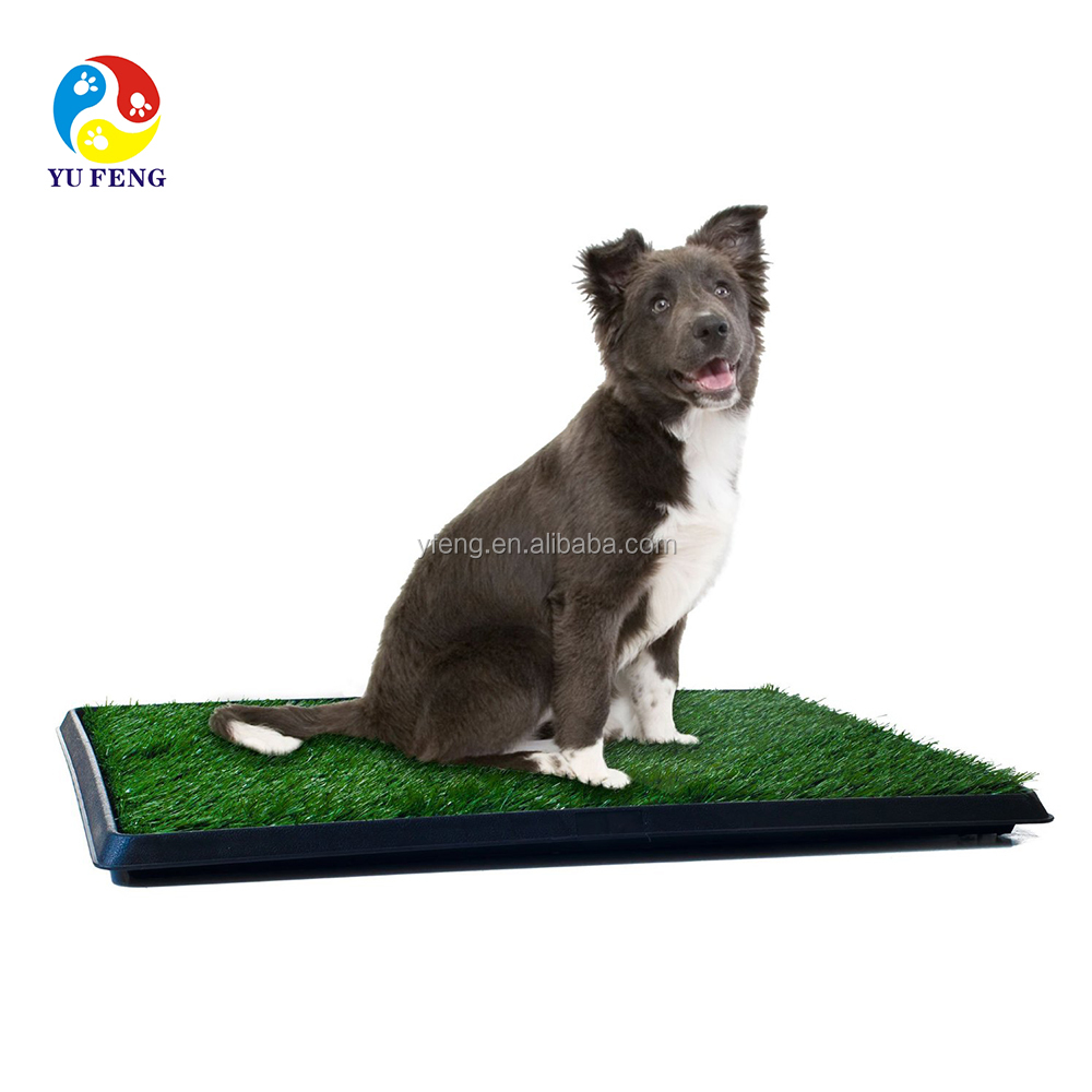 Puppy toilet training product