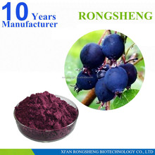 Best Quality Natural Acai Berry Extract Powder