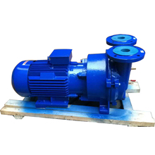 Concise Design Stainless Steel Water Ring Vacuum Pump