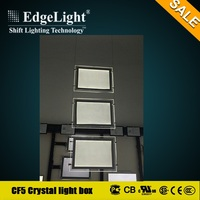 Edgelight CF5 double side hang type picture frame