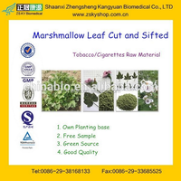 Hot Sale Cigarettes/Tobacco Raw Material Marshmallow Leaf for Sale