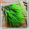 Hot selling 7-green fork artificial plants plastic grass bouquet family flower shop dest rustic clover plant decoration