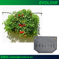 Evolove Garden Home Garden Smart Garden