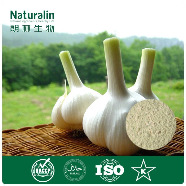 100% freeze dried garlic powder with good water solubility for shampoo