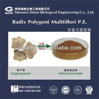 pure natural 10:1 polygonum multiflorum root extract powder