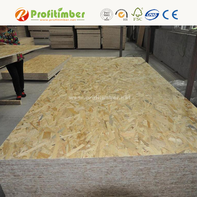 Cheap OSB Sheets Price