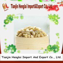 organic dry fruit pine nut kernels for sale from northeast china 1