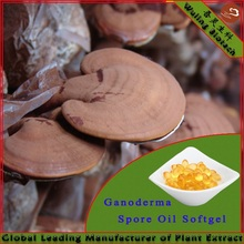 2013 New product Ganoderma/Lingzhi/Reishi Extract Oil Softgel(500mg/softgel)