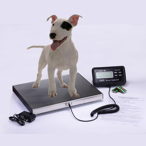 200kg electronic digital floor veterinary scales for pet animal vetting with stainless steel platform and LCD weight indicator