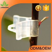 2017 high quality plastic garden vegetables fruits vines and orchid hot sale tomato grafting clips