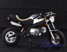 SKYTEAM 50CC 4 stroke New Cafe PBR msx ksr STYLE bike ZB50 (EEC Approval)