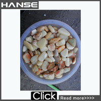 HS-PE07 manufacture hot sale home use colored gravel for landscaping