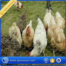 lowest price chicken wire mesh/ double twist hexagonal mesh netting