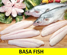 BASA FILETE de PESCADO (Pangasius Filete)