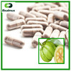/product-gs/gmp-factory-herbal-extract-garcinia-cambogia-pills-60149712390.html