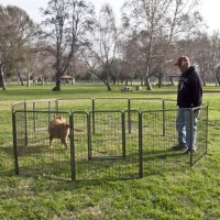 large outdoor wholesale wire mesh metal dog playpens/cage