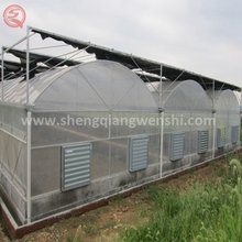 Bamboo seeding plastic commercial used greenhouse aquaponics system