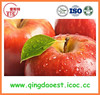 Chinese sweet juicy fruits red gala apple with high quality